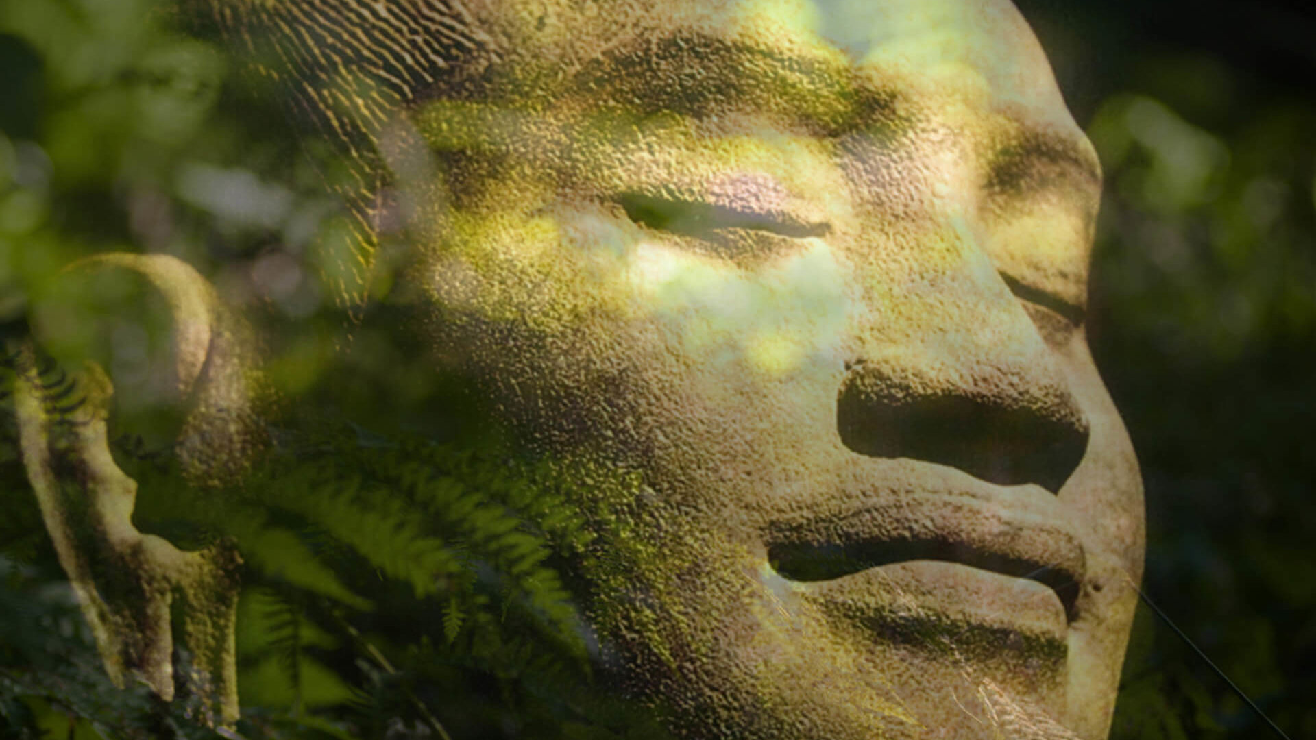 soiree-meditation-bruxelles